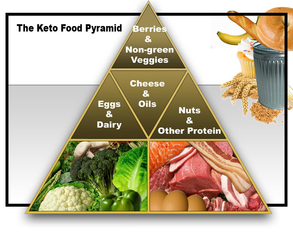 dieta cetosisgenica artigos cientificos